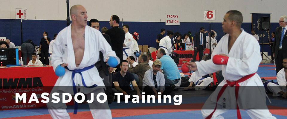 massdojo-training